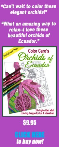 orchids of Ecuador, adult coloring book