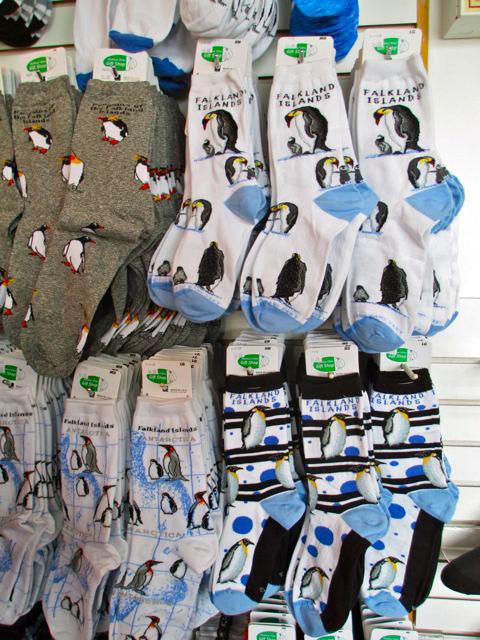 Falkland Islands, penguins, British, Argentina, South America, socks, Port Stanley
