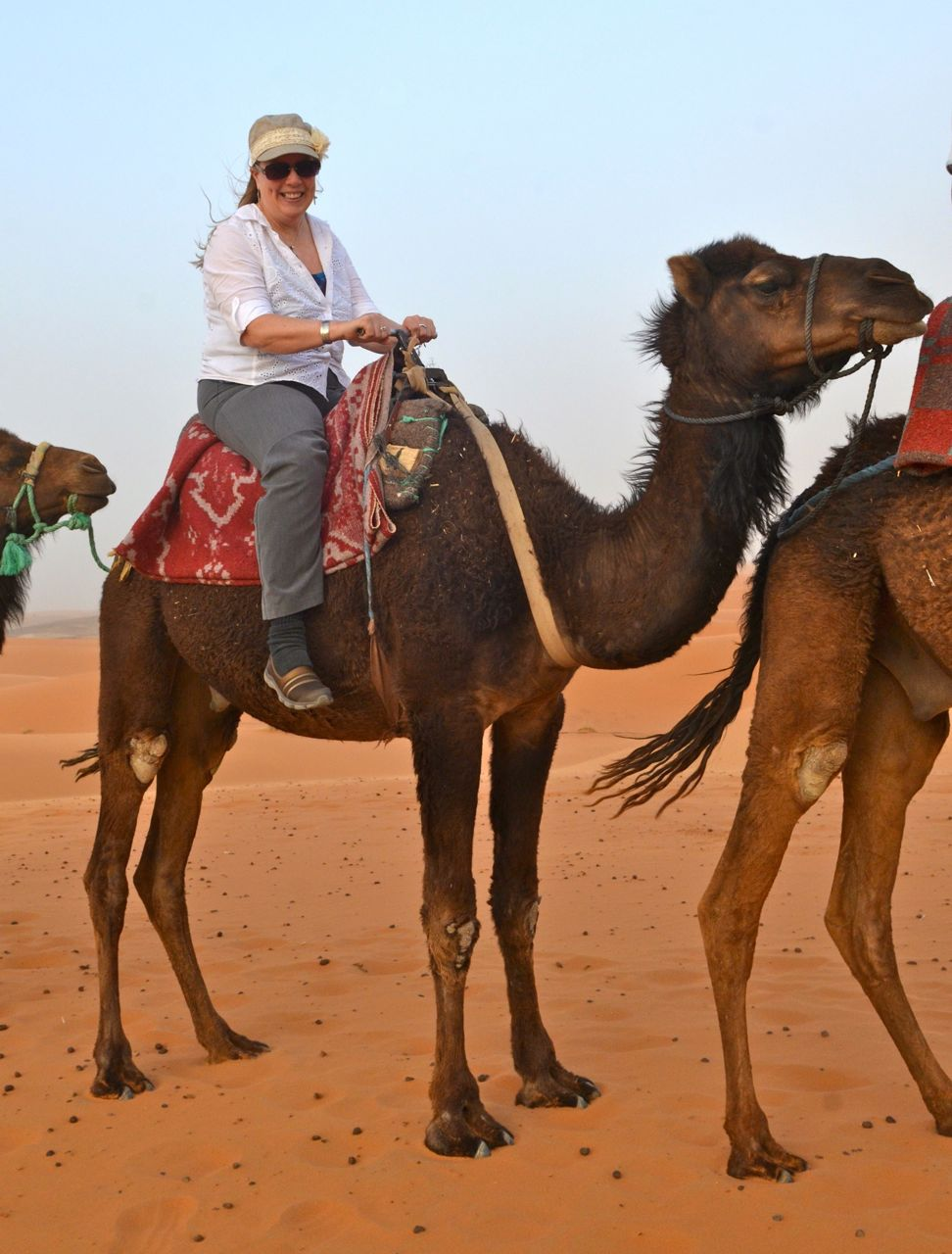 Camel Ride in Morocco