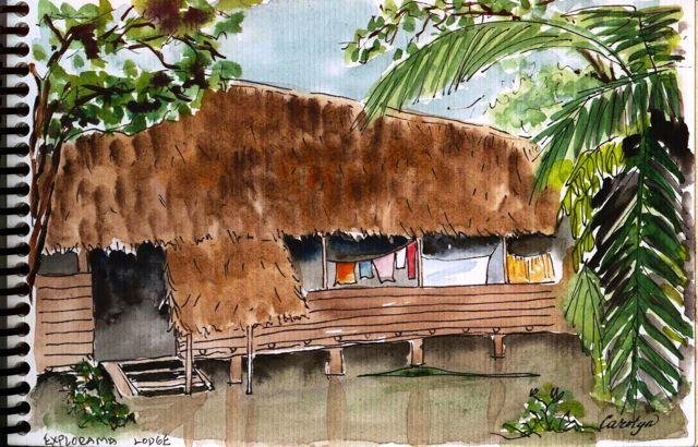 art journal, jungle, rainforest, Peru, Amazon, Napo, Amerindian, Yanamono