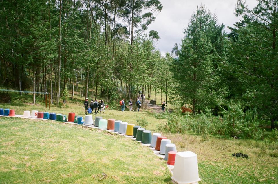 Row of buckets in the forest