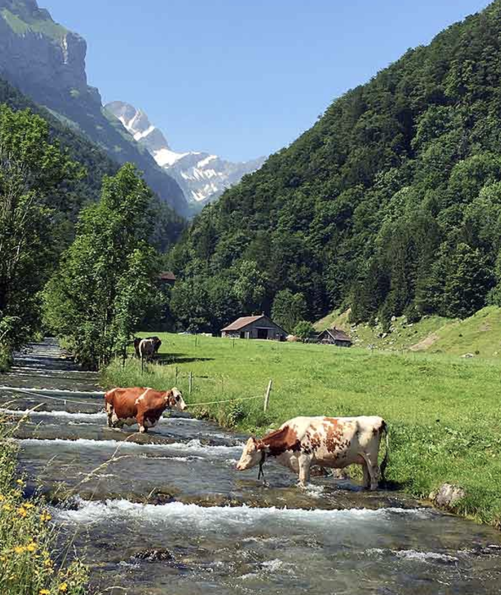 Aescher restaurant, Swiss Alps, Bambi Vincent