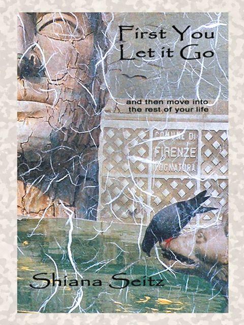 fado, travel memoir, First You Let It Go, Shiana Seitz