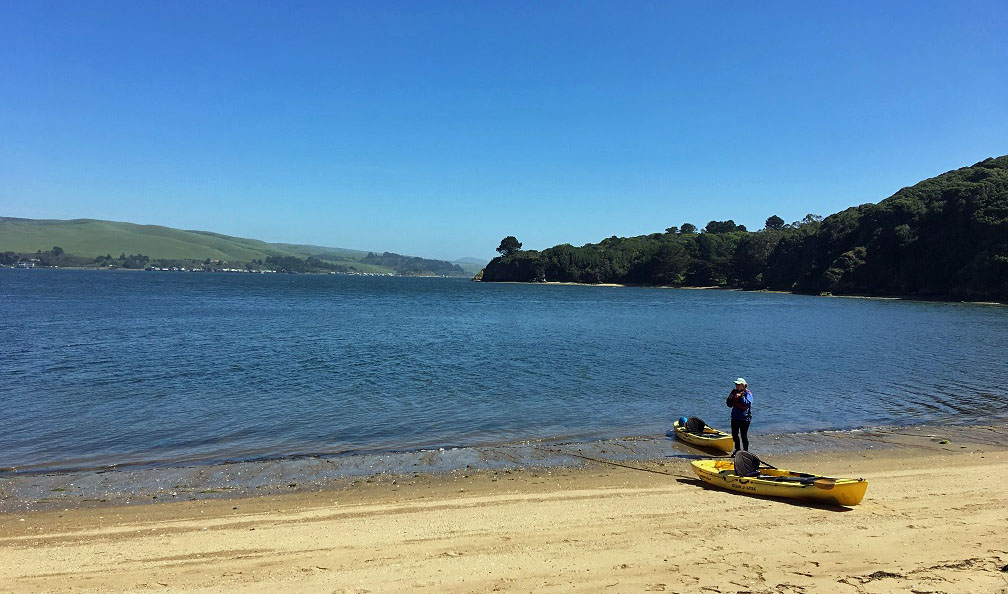 Kayaking Tomales Bay, California