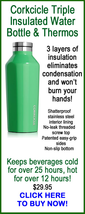 Corkcicle Triple Insulated Water Bottle & Thermos