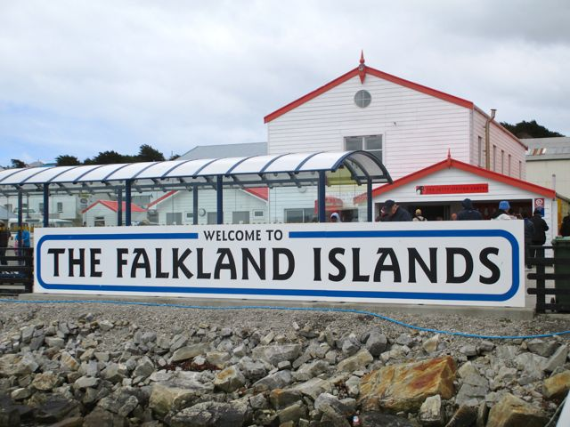 Falkland Islands, penguins, British, Argentina, South America, Port Stanley