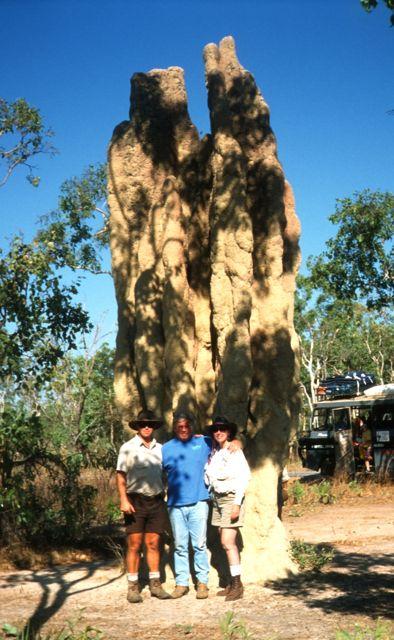 Huge termite nest in Kakadu National Park, Australia