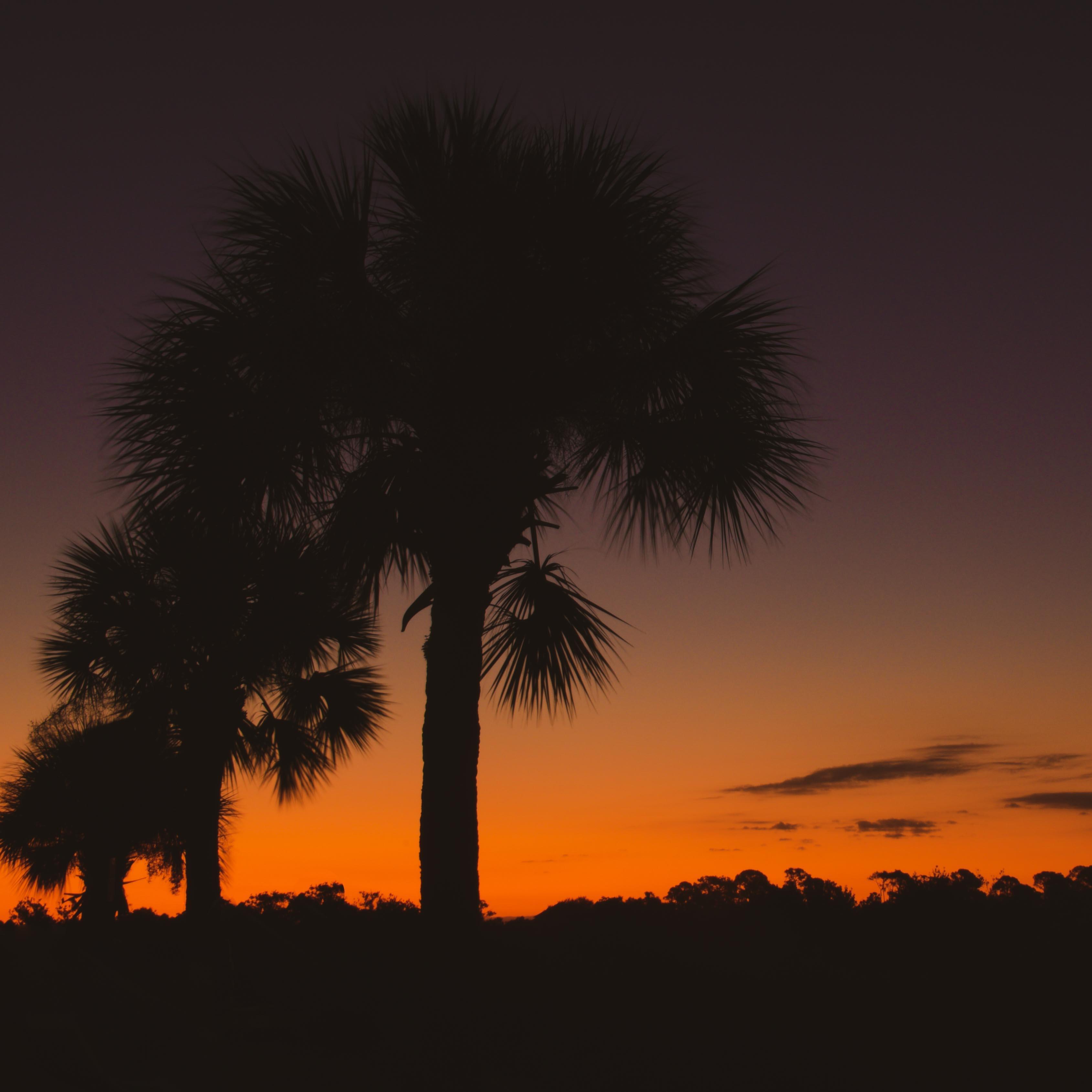 Key West, Florida, Key Largo