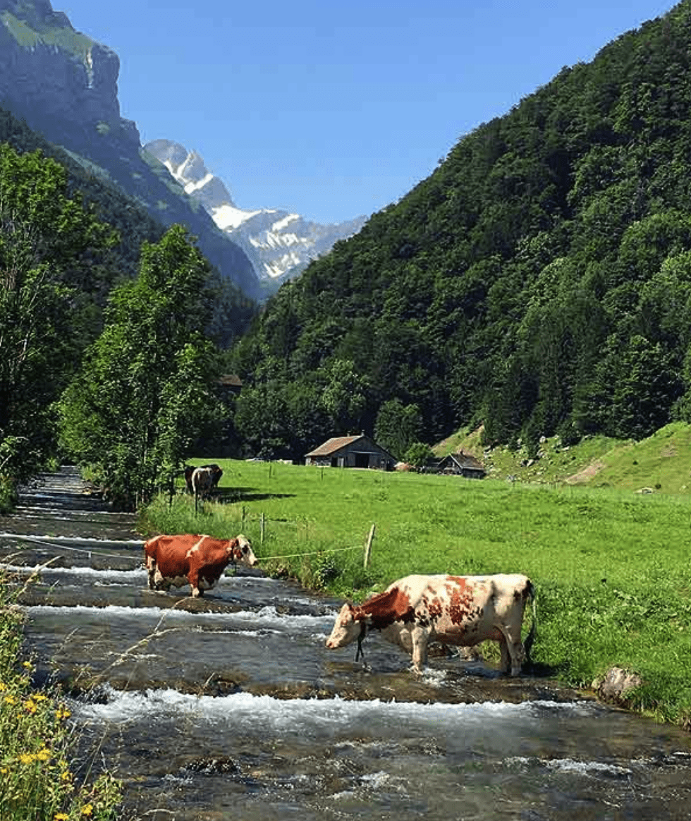 Beautiful alpine river in Switzerland with snow capped mountains