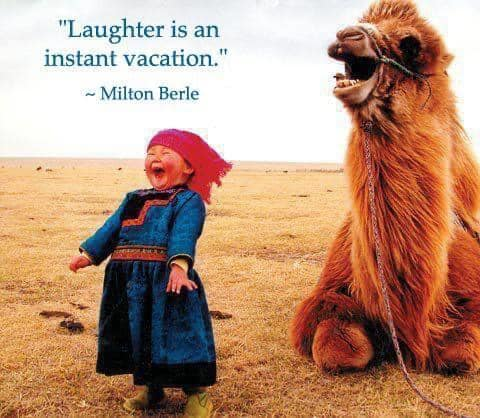 laughter is a vacation quote - girl laughing with camel