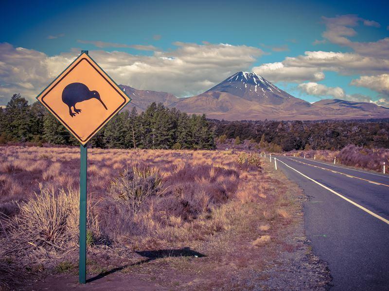 New Zealand Adventures North