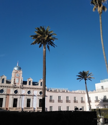 historic buildings and palm trees with blue sky
