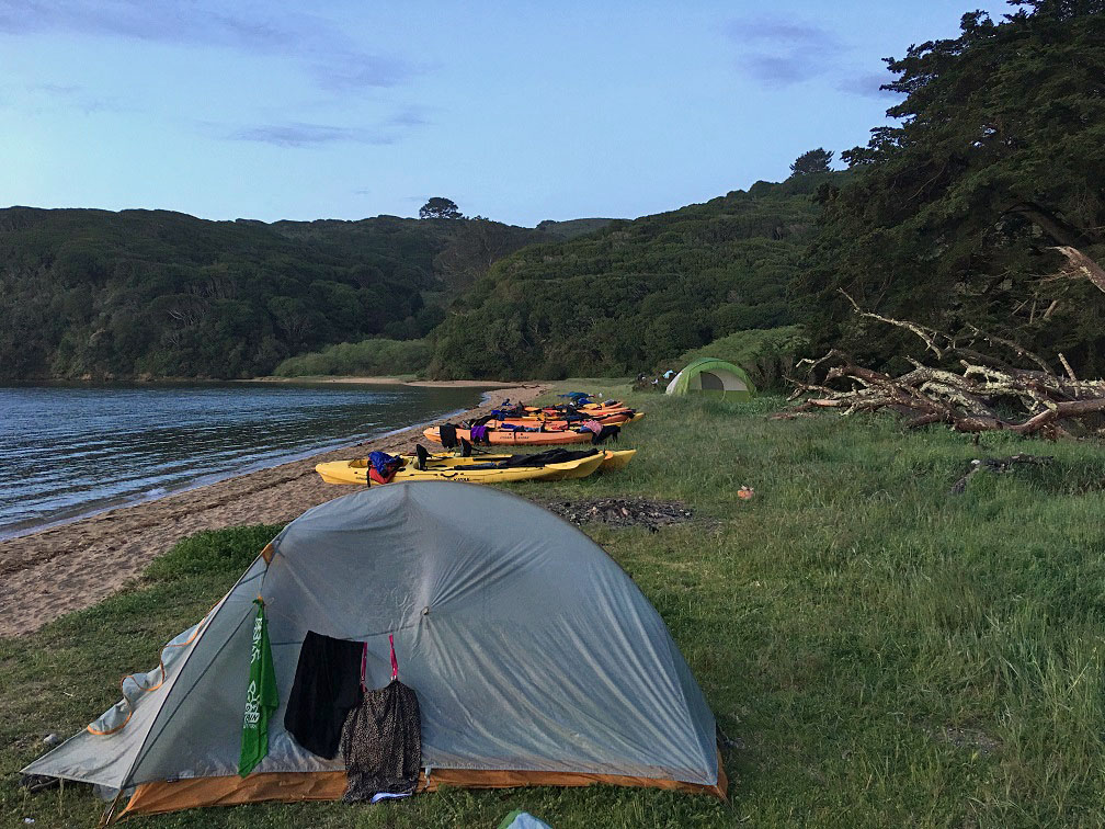 Camping, Tomales Bay, California