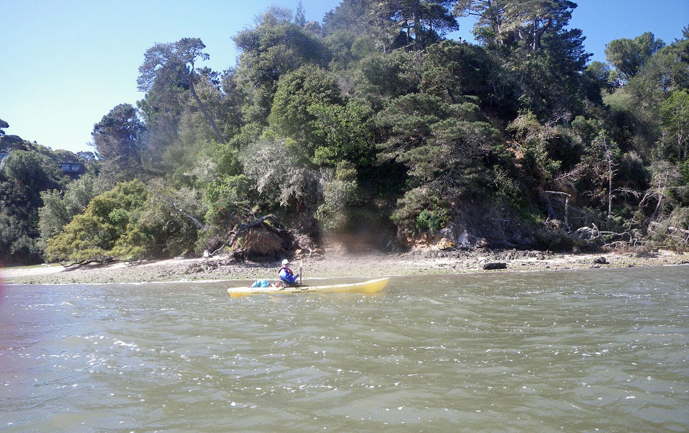 Kayaking, Tomales Bay, California