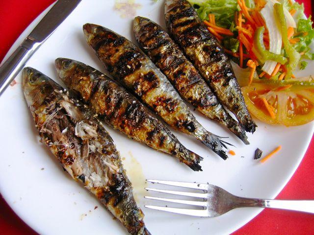 sardines, Tavira, Portugal