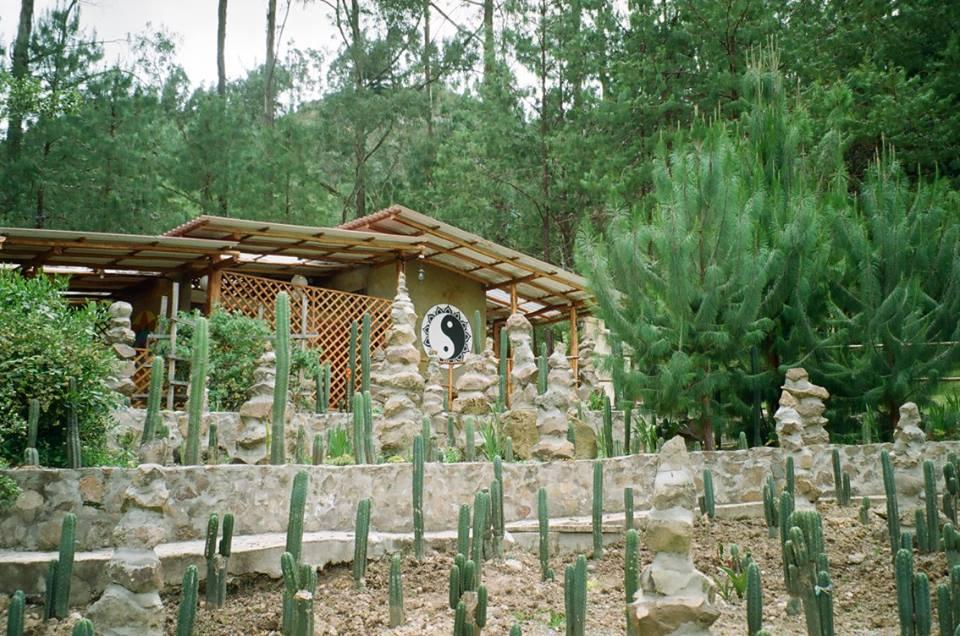 Gaia Sagrada, ayahuasca, Cuenca, Ecuador, Retreat, shaman