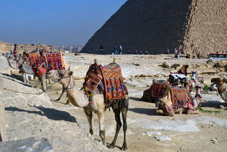 Egypt,Caro,Nile,Sphinx,pharaoh,pyramids,GizaPlateau,Travel,Sehmet,Tombs,alabaster,hieroglyphics,camels,Mena House,Marriott