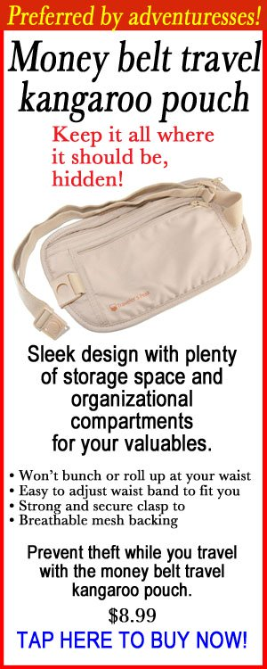 MONEY BELT ORGANIZATIONAL COMPARTMENTS FOR YOUR VALUABLES