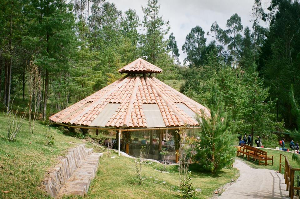 Gaia Sagrada, ayahuasca, Cuenca, Ecuador, Retreat, malooka, shaman